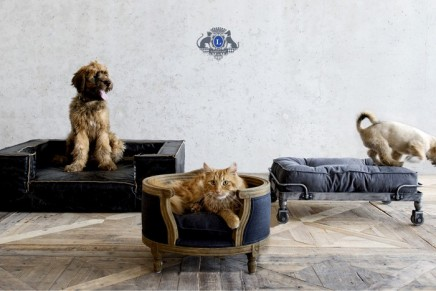 Genuine pieces of miniature handmade furniture for royal pooch