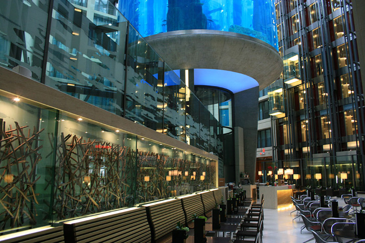 Fish tanks for the home - The Tropical Fish Inhabitants And The Architecture Of The Aquadom