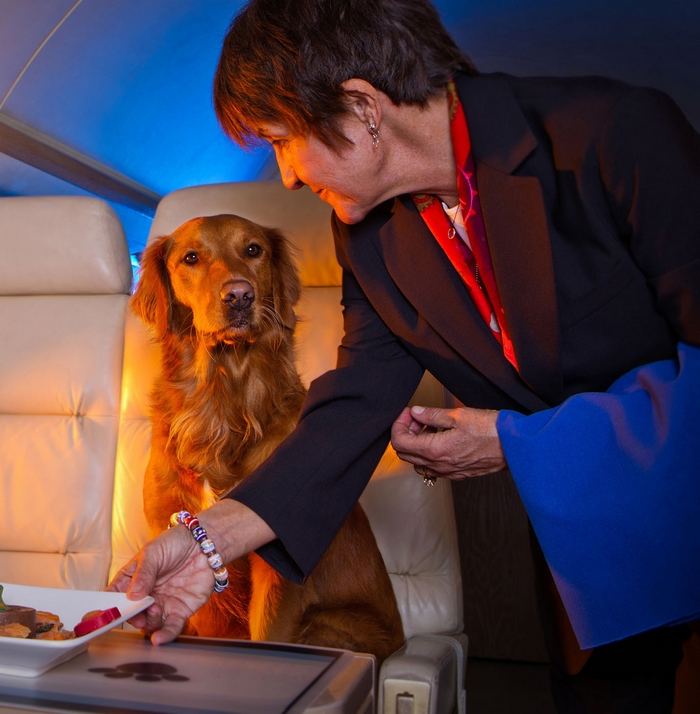 Luxury air traveling with pets furst class service for Small dogs on airplanes