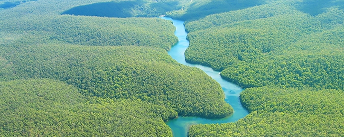 http://www.2luxury2.com/wp-content/uploads/2014/02/Amazon-River-Aerial-View.jpg