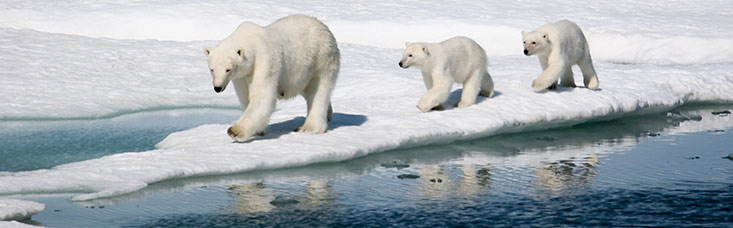 2016 Northwest Passage Expedition