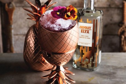 """raw luxe"": If Absolut Elyx was a home this is what it would be"