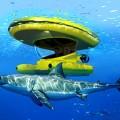 Amphibious Sub-Surface Watercraft --