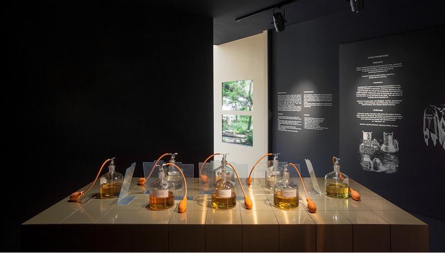 BE OPEN The Garden of Wonders- expo2015