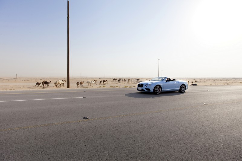 Bentley's Desert Train Race 2015