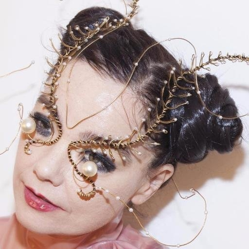 Bjork's unique stage outfits up for Passion for Fashion auction
