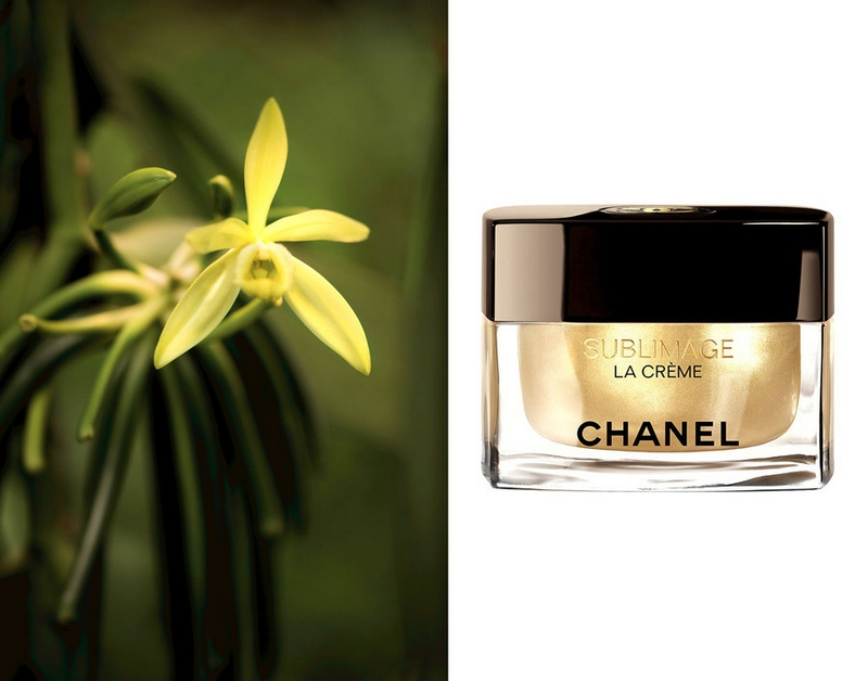 Chanel Sublimage Collection - Vanilla planifolia plant