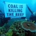 Coal is killing the Reef