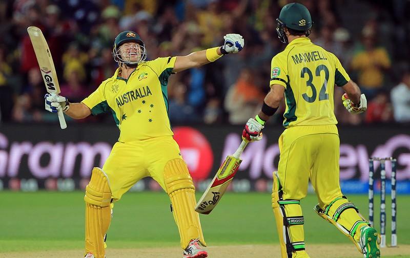 Cricket World Cup Quarter Final