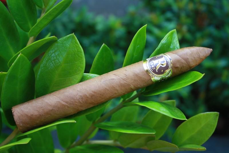Cuban cigars robaina