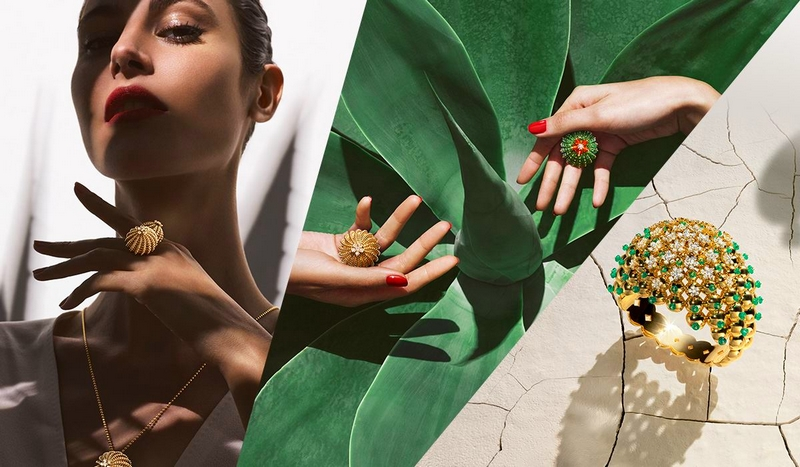 desert-beauties-cactus-de-cartier-collection-2016