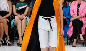 Dior Ready-to-Wear Spring-Summer 2015 collection-0004