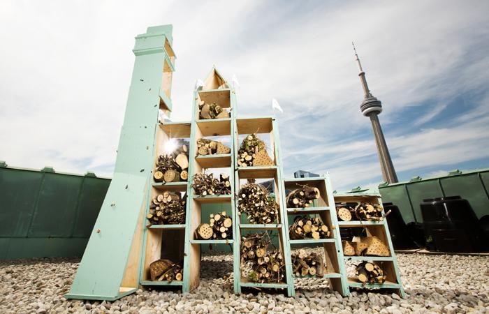 Fairmont-Bee-Hotel-Toronto