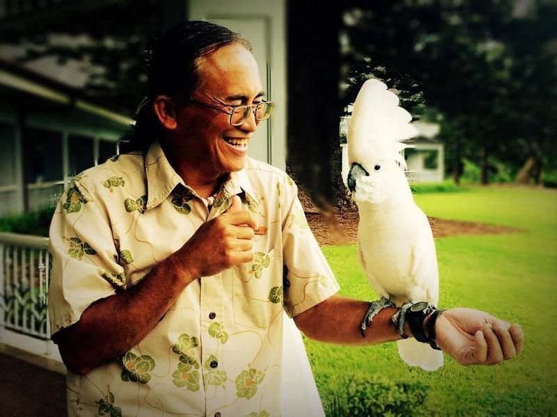 Four Seasons Resort Lanai - resort aviarisy