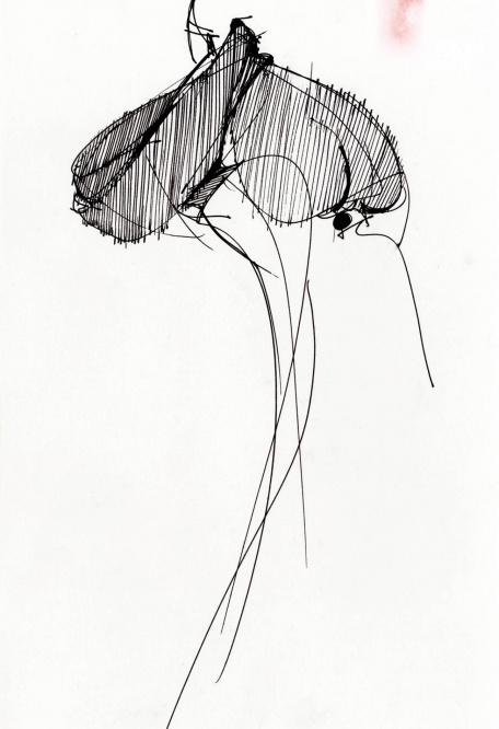 Gianfranco Ferre White Shirt - La camicia bianca secondo a me 2015 exhibition Milan-sketches