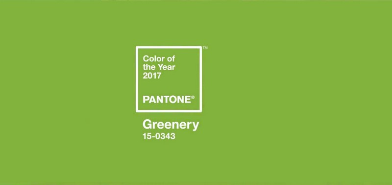 greenery-colour-of-2017-according-to-pantone-institute