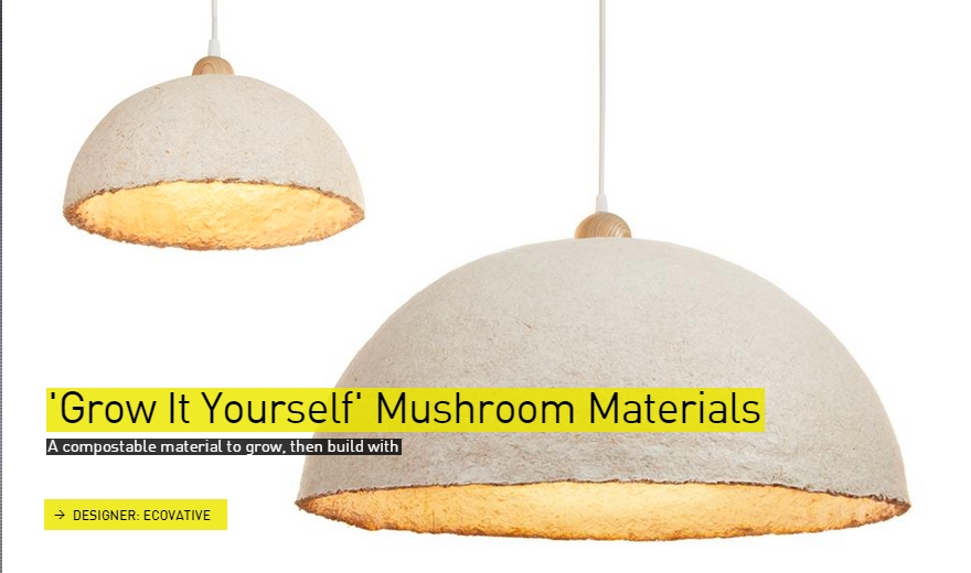 Grow It Yourself Mushroom Materials- The Designs of the Year 2015 nominees @ Design Museum London