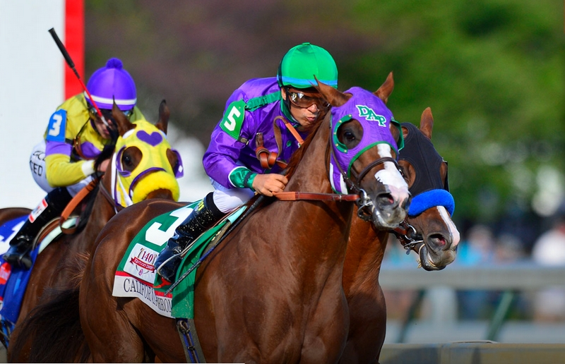 High-Stakes Horse Races - The Run for the Roses, also known as the Kentucky Derby.