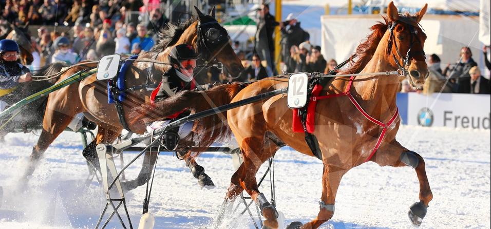 Hurdle summit World Snow Hurdle Championship Final-