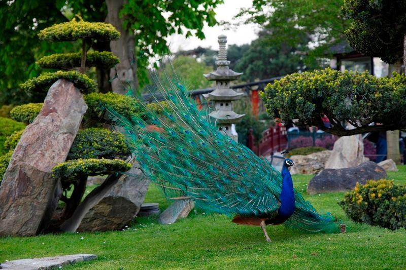 jardin-dacclimatation-paris-france-amusement-park