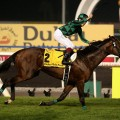 Just A Way racehorse