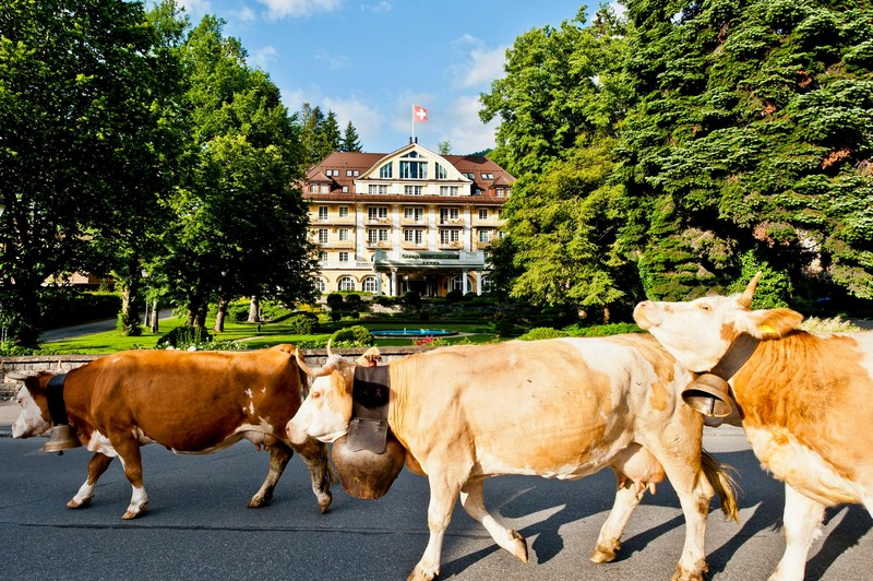 Le Grand Bellevue - Gstaad in Switzerland -SLH Awards 2015-Best Hotel Photograph