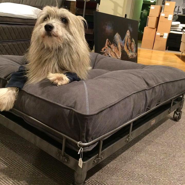 Lord Lou Furniture