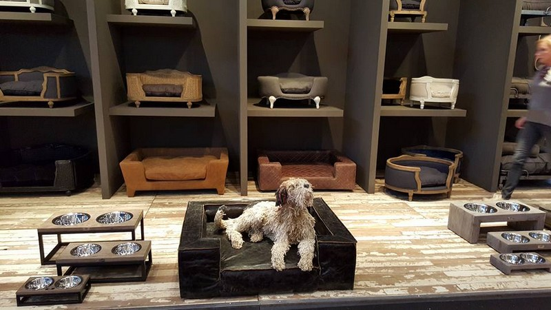 Lord Lou luxury pet furniture