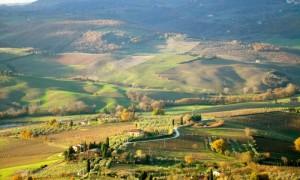 Montepulciano-Landscape Picture