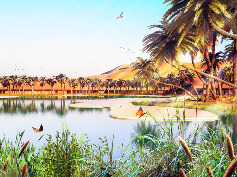 Oasis Eco Resort UAE-