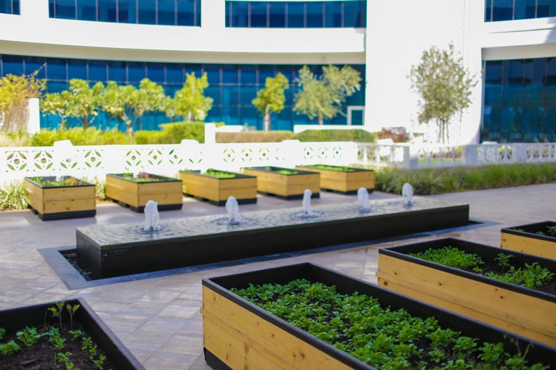 Organic garden inaugurated at Waldorf Astoria Dubai Palm Jumeirah-