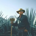 Patrón Tequila AgavePlantation