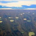 Permafrost thaw ponds