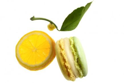 Macaron of the Month: Lemon Zeste d'onctuosité