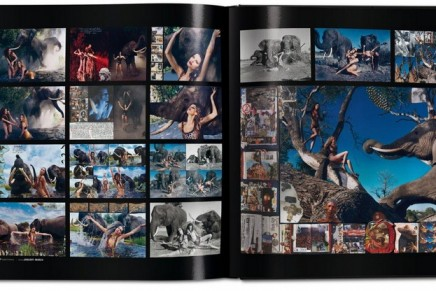 Pirelli – The Calendar. 50 Years And More. From a garage calendar to the most desirable object for the jet set