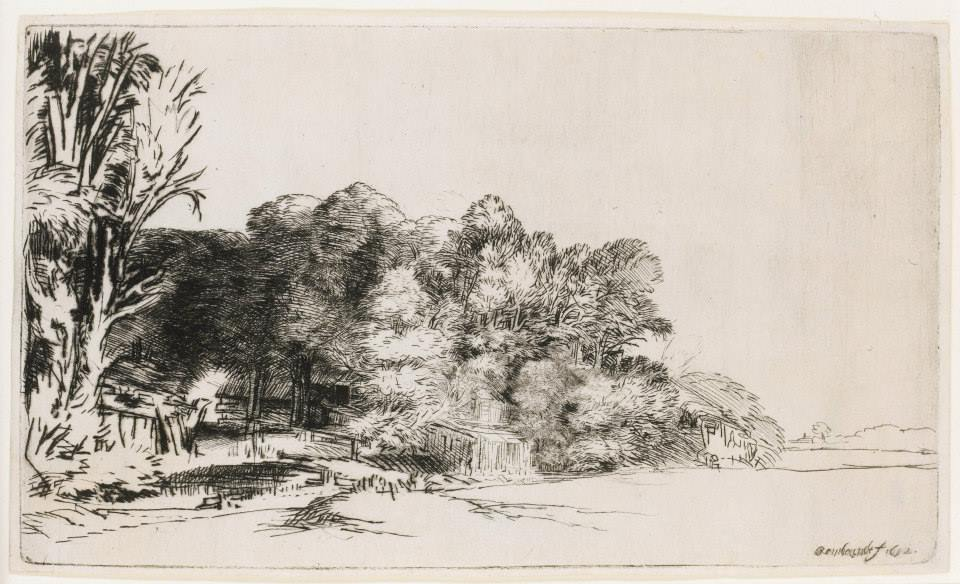 Rembrandt, Clump of Trees with a Vista (1652)