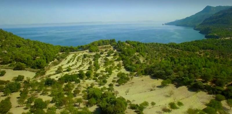 Richard Branson  Son Bunyola Estate Mallorca-2luxury2