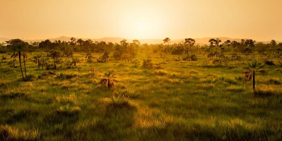 Sanctuary Belize -natural 2,000-acre stretch of sub-tropical savannah