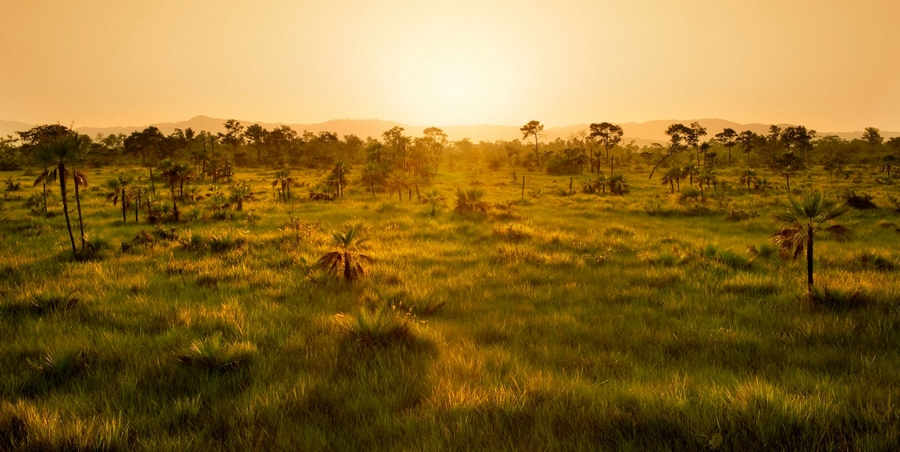 Sanctuary Belize -natural 2,000-acre stretch of sub-tropical savannah