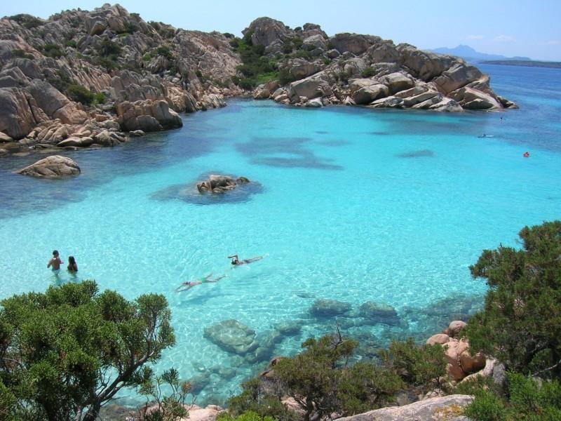 Sardinial attractions-