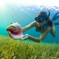 Snorkel in Savannah Bay
