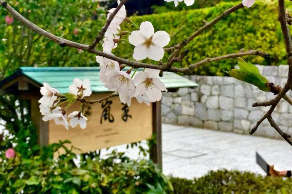 Suiran Luxury Hotel Kyoto-2015