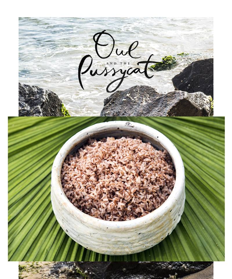 the-owl-and-the-pussycat-hotel-sri-lanka-red-rice