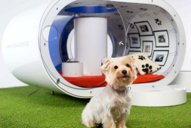 The ultimate #HomeDog: The dream doghouse for pampered pooches