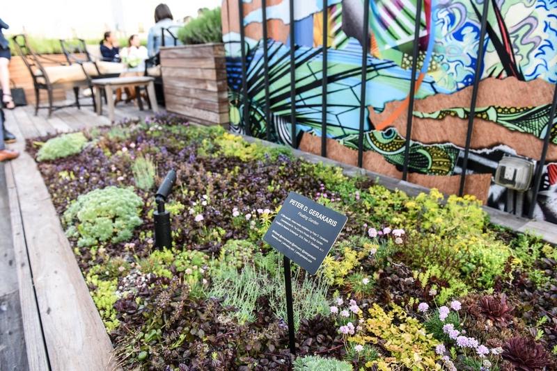 the-surrey-hotel-nyc-rooftop-garden