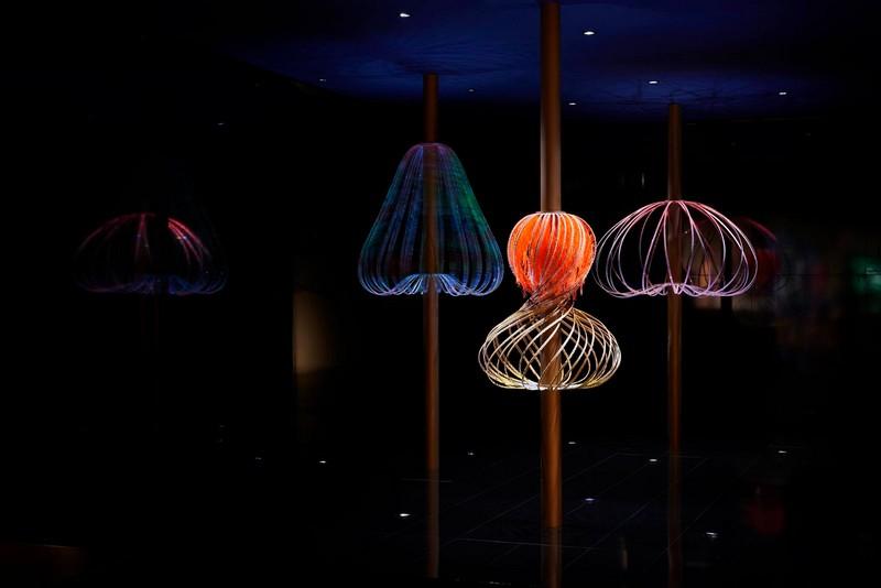 The Swarovski Designers of the Future Award 2015-