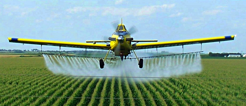 The answer lies in the soil and pesticides