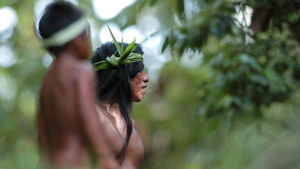 Tropic Journeys in Nature, Ecuador