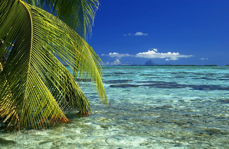 Vahine Island in French Polynesia-