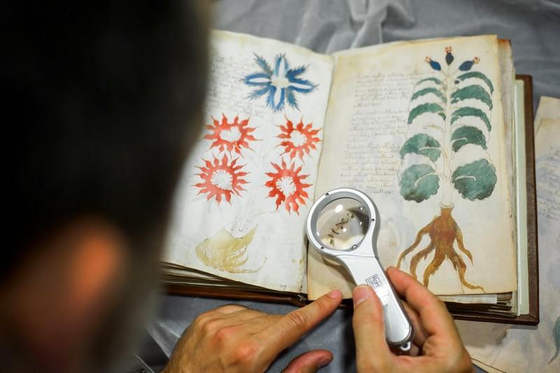 Voynich Manuscript-